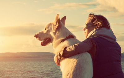 5 reasons that Caring for a Dog is good for your Health!