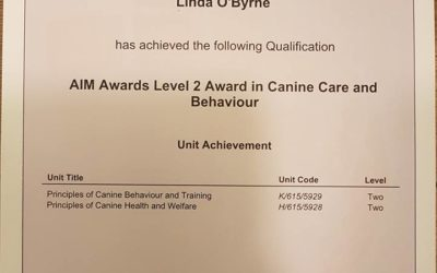 Certification in Canine Care & Behavior Achieved! :)